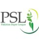 psl fantasy cricket tips